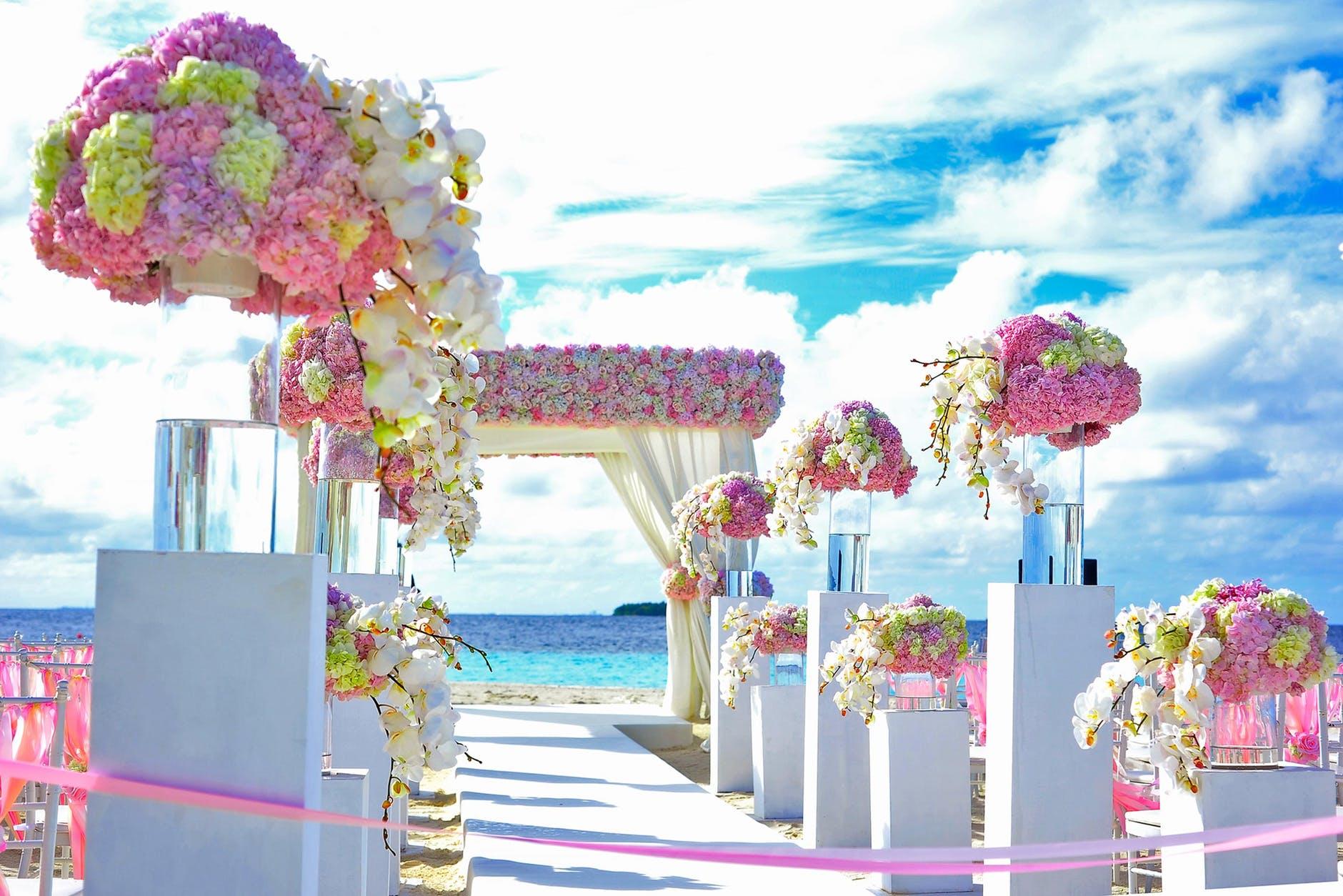 Wedding venue near me - clarence house - 44 Albert Street Belmore, NSW, 2192